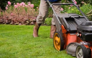 mow-your-lawn_480